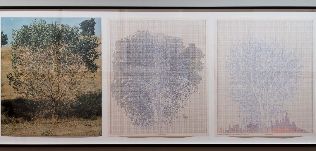 Charles Gaines: 'Palm Trees and Other Works' A Rigor and Specificity to Investigations