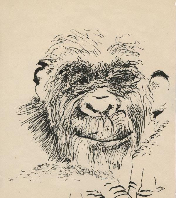 Hammer Museum to Present Paul McCarthy: Head Space, Drawings 1963-2019,