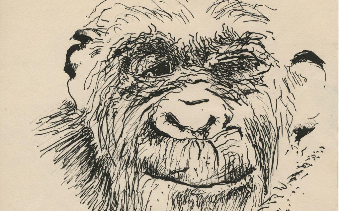 Hammer Museum to Present Paul McCarthy: Head Space, Drawings 1963-2019, FEB 2–MAY 10, 2020