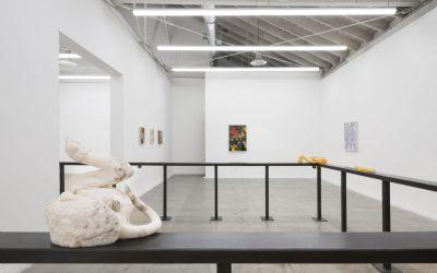 Fin Simonetti: 'My Volition' Transforming the Ordinary Into the Exquisite